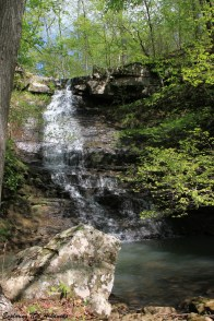 Native American Falls in Piney Creeks WMA (Ozark Forest) photo