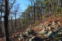 Ouachita Trail 02: Pics of Winding Stair TH to Highpoint to Saddle (23.7 to 25.8) photo