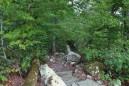 Mount Nebo: Pics of Nebo Steps/Nebo Springs Trails photo