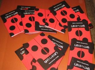 Arlen Shahverdyan. The Ladybug Leo book_picture 03
