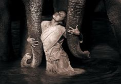 elephant-and-human_harmony-with-the-nature_08