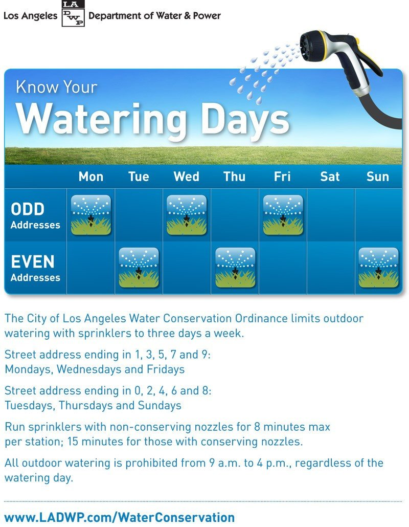 Watering-Days-Flyer-English (1)