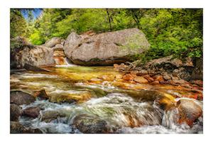 Larry Arends - Copper Creek