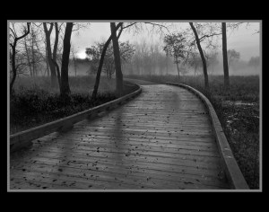 Boardwalk - Bob Reynolds