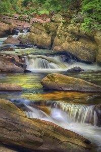 Bob Reynolds - Pollard Mills Falls