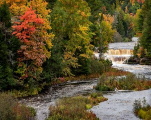 Kathy Grady - Lower Tahquamenon Falls