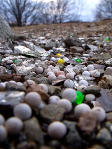 Hundreds of plastic air gun BBs, along with a similar number of glass shards litter the ground around a rock on Hill's Hill. March 12, 2011.