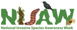 National Invasives Species Awareness Week logo with green letters and wildlife