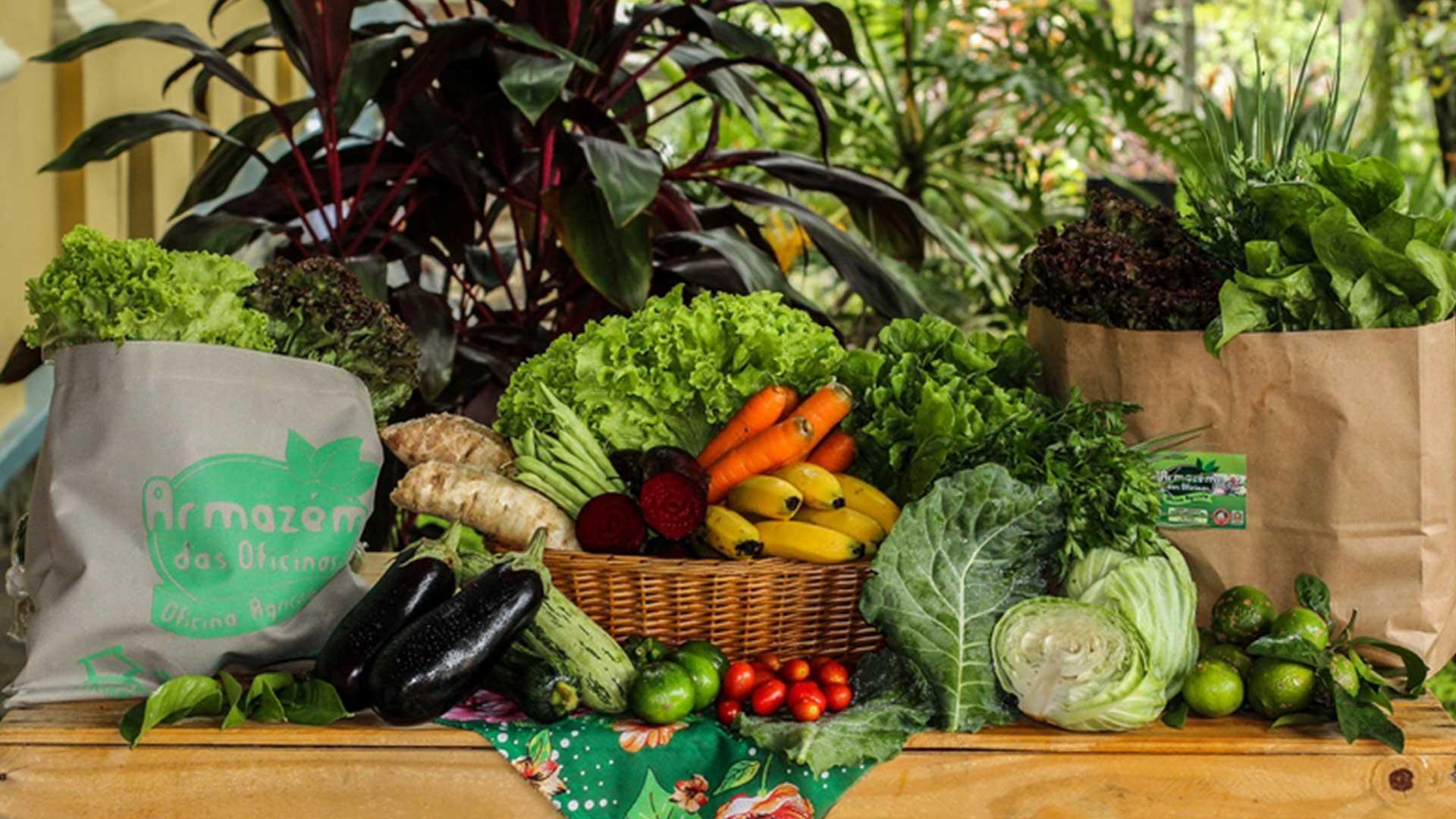 cestas-organicas-campinas