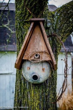 Gas can repurposed as a bird house.