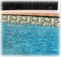 Waterline Pool Tiles | Tile Design Ideas