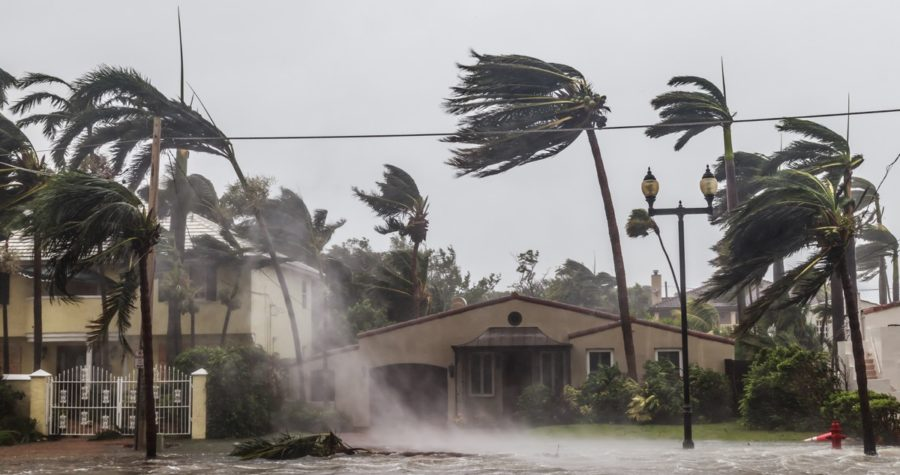 how to hurricane proof your house