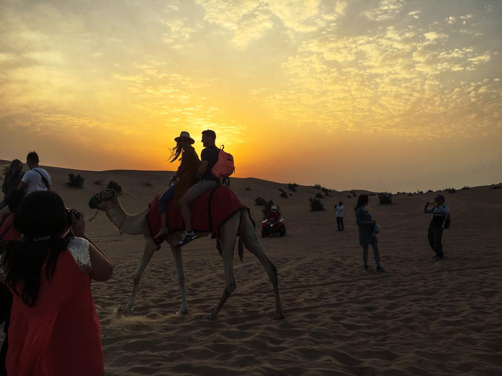 Arm Party Central - Dubai Honeymoon Literally the Wertz