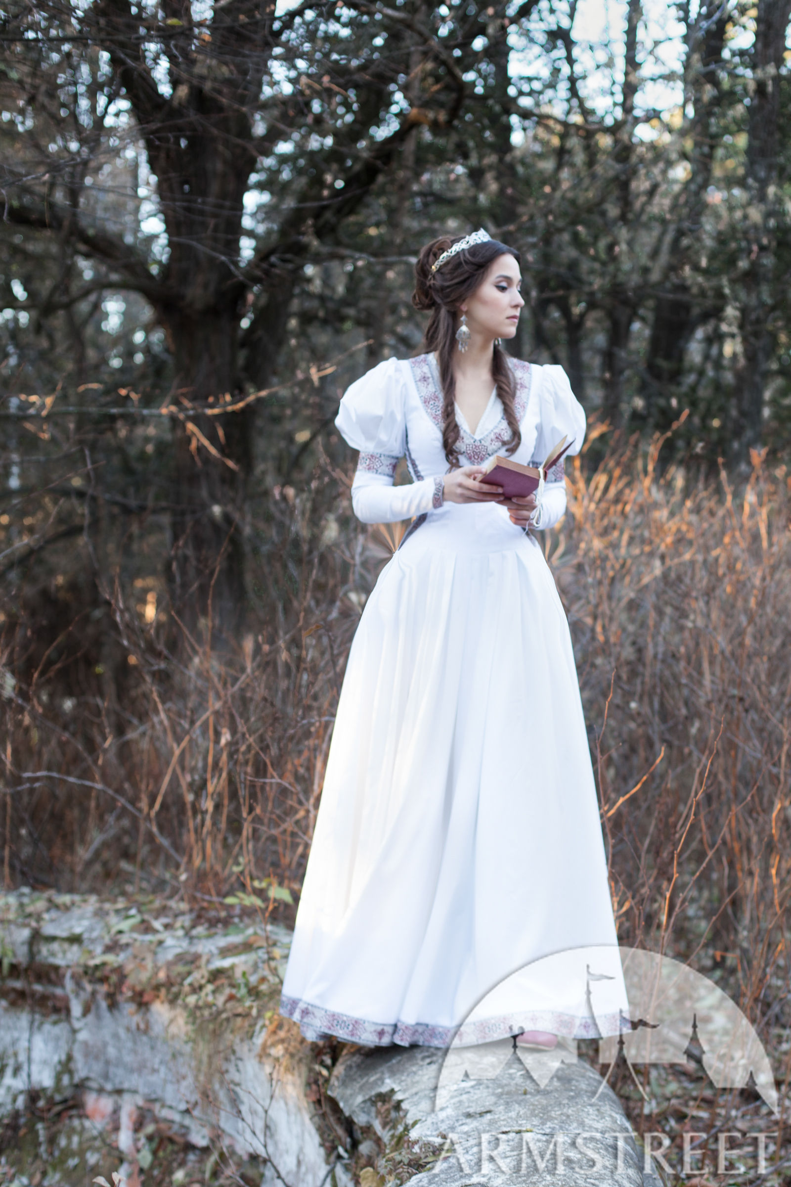 Found Princess Dress for period and medieval events