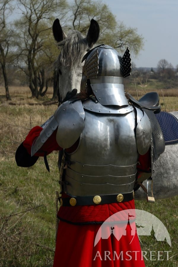 Polish historical hussar knight plate armor suit realized