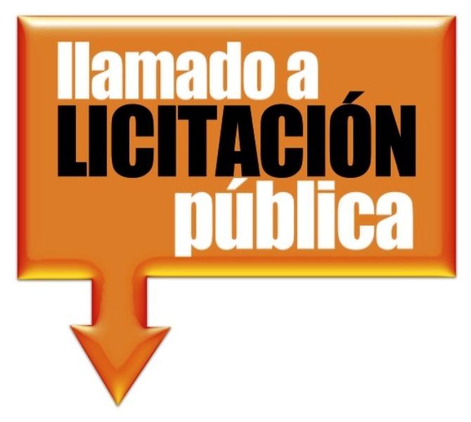 licitacion pública (3)
