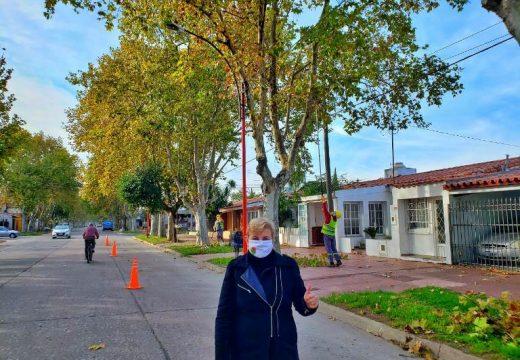 Cañada de Gomez. La municipalidad realiza tareas de poda y escamonda.