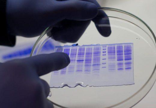 Coronavirus: Una empresa cañadense de biotecnologia avanza en estudios en busca de la cura del Covid-19.