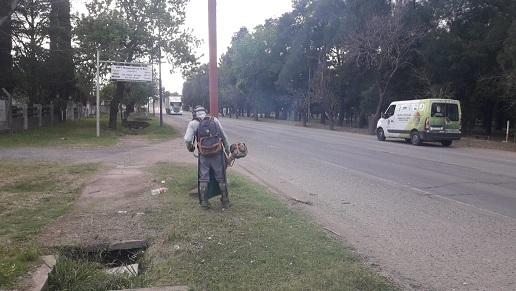Cañada de Gómez. Municipio refuerza trabajos de desmalezamiento.