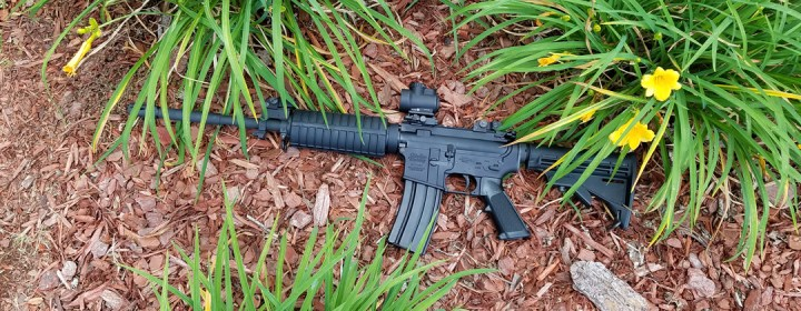 ArmsVault Network - AR-15 Rifle & Flowers
