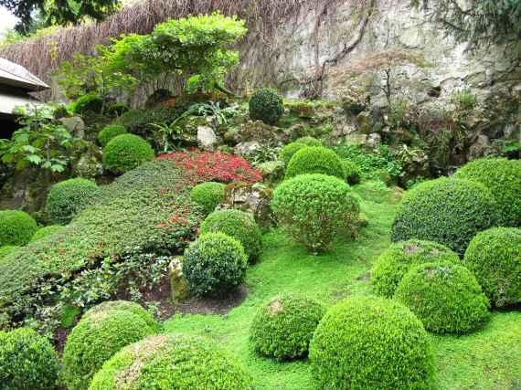 Jardin Albert Kahn (114)