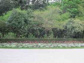 Parc de Bagatelle 7