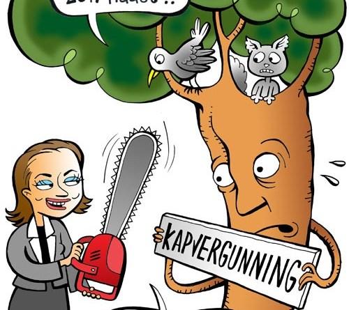 Gemeente Arnhem: Verleende kapvergunning – noodkap
