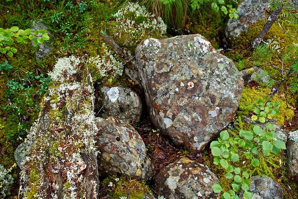 Felsen im Sånfjället Nationalpark, Härjedalen, Jämtland