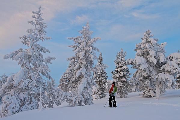 Mit den Schneeschuhen durch das Fjäll bwi Vittjåkk