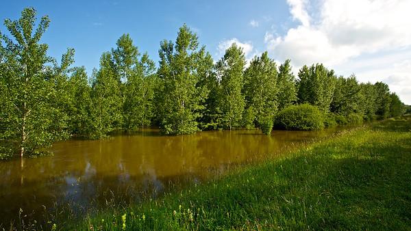 Braunes Hochwasser