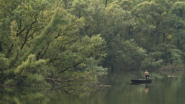 Angler im Sommerhochwasser am Illinger Altrhein.