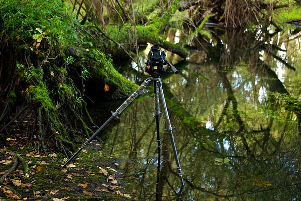Kamera und Stativ halb im Wasser