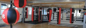 Arnold Boxfit 4133 - Kraft- und Fitness-Bereich