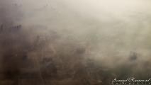 Delhi in de mist