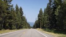 Mooi stukje snelweg door het bos
