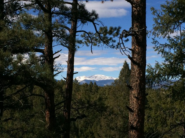 A glimpse of Mount Bierstadt through the trees.