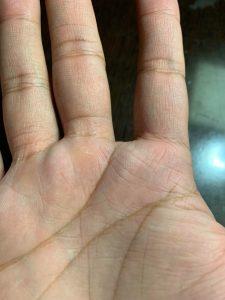 montes de la mano