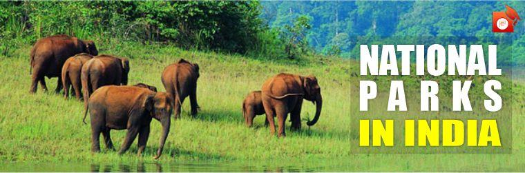 असम में देहिंग पटकाई नया नेशनल पार्क            (डेली करंट अफेयर्स -09.06.21)