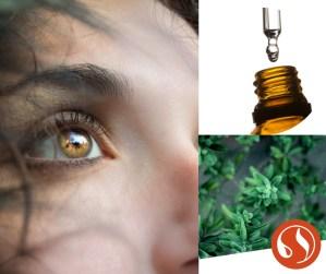 Formation atelier huiles essentielles peau