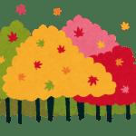 北海道の紅葉と今日の健康ポイント
