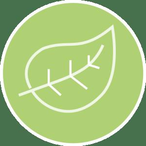 Aroma1x1 Blog-Kategorie