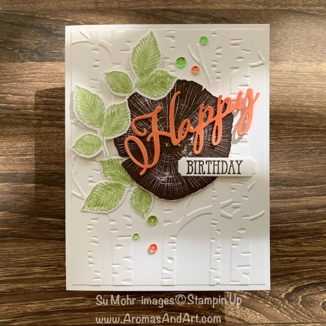 By Su Mohr for TGIF; Click READ or VISIT to go to my blog for details! Featuring: Rooted In Nature Stamp Set, Nature's Roots Dies, Merry Christmas Dies, Woodland embossing; #masculinebirthdaycards #birthdaycards #masculinecards #rootedinnature #nature #natureoncards #woodland #handmadecards #handcrafted #diy #cardmaking #colorcombinations #cardchallenges