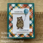 By Su Mohr for PP; Click READ or VISIT to go to my blog fior details! Featuring: Special Someone Stamp Set, Special Day Dies, Stitched Rectangles Dies, Tasteful Textile embossing, Plaid Tidings Designer Paper; #getwellcards #animalsoncards #raccoons #balloonsoncards #specialsomeone #twostepstamping #handmadecards #handcrafted #diy #cardmaking #papercrafting #fallcritters #cardthemes #cardchallenges #stampinup
