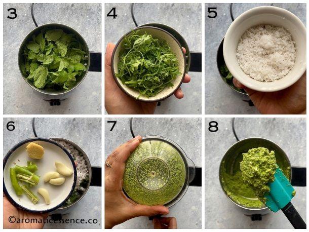 Preparation of mint paste