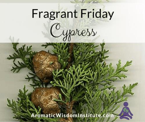 FF-Cypress-Graphic