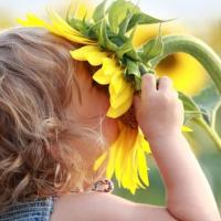 Aromaterapia para los niñ@s