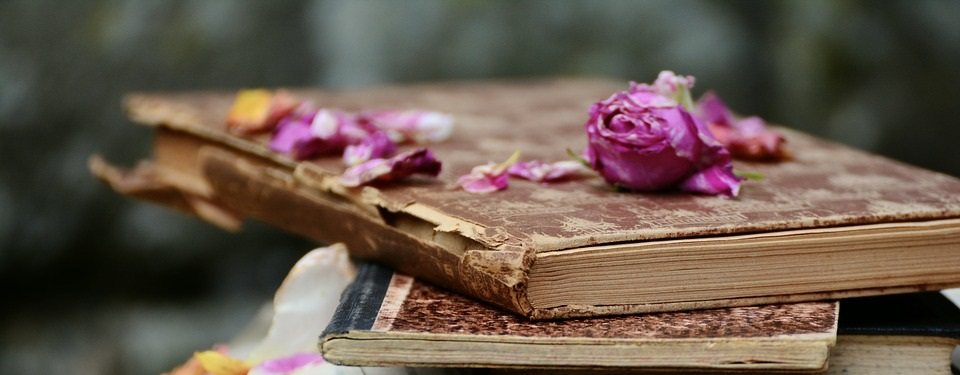 Libros de aromaterapia