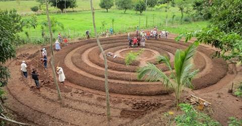 Huertos circulares, estrategia de adaptación frente al cambio climático