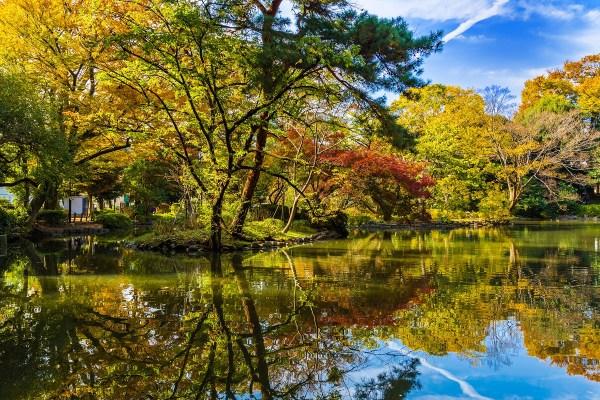 広尾にある有栖川公園の風景。有栖川公園の周辺にも出張アロママッサージに伺っています。