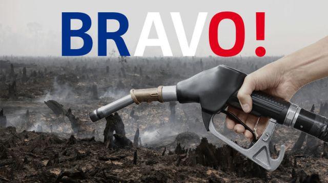L'huile de palme n'est plus un biocarburant en france.